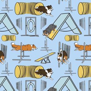 Simple Border Collie agility dogs C - blue