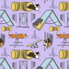 Simple Border Collie agility dogs C - purple