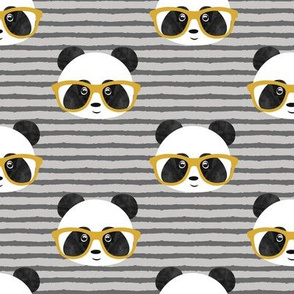 pandas with glasses - grey stripes gold