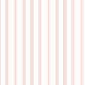 Ticking Stripe: Rose Gold 2