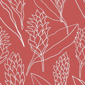 Ginger outlines on berry