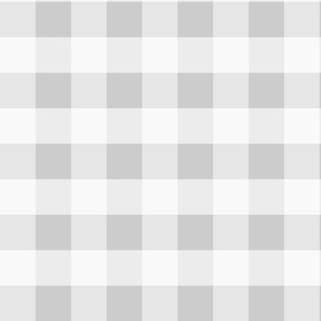 Large Gray Check: Pure Grey Check Light