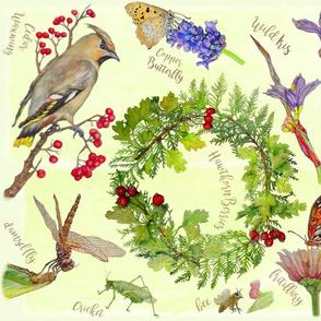 Nature Art Journal - Summer