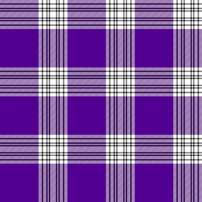 "Menzies mauve and white tartan, 6"" dark"