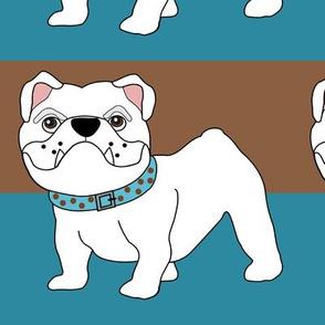 Victor the Little White Bulldog