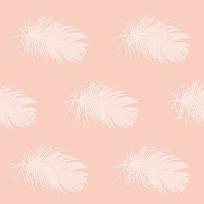white feather on peach