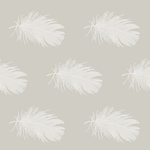 white feather on hazel grey