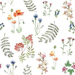 Botanica by Anna
