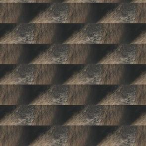 raccoonfur