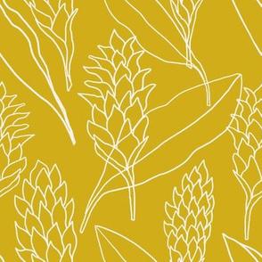 Ginger outlines on mustard