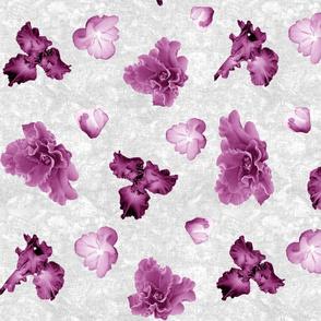 Flower Play Iris Glad Mauve on White
