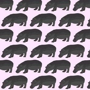 hippopotamus in pink