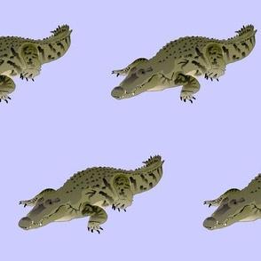 Resting Crocodile in purple
