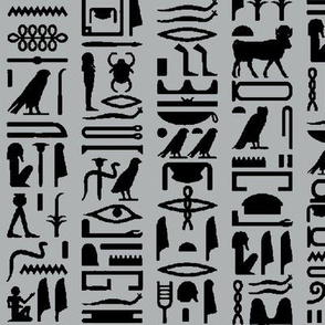 Egyptian Hieroglyphics on Grey // Large