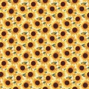 Tiny Happy Yellow Sunflowers