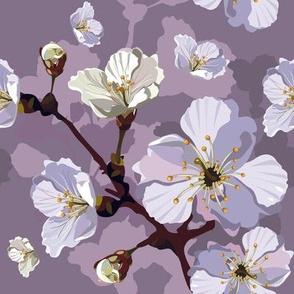 Peach Blossoms Lavender
