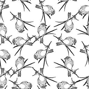Finch Bird Vintage Bird Art Pattern