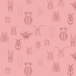 beetles in pink