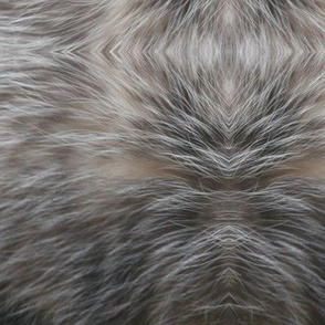 opossumfur