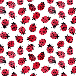 ladybugs on white, watercolor, small