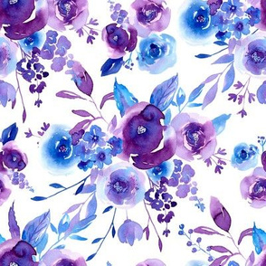Watercolor violet roses flowers on white background