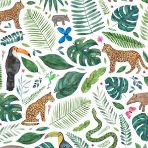 Rainforest or Jungle print