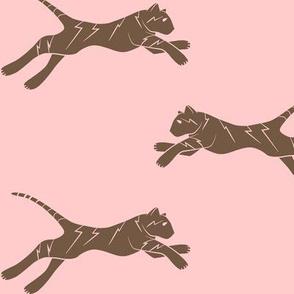 electric tiger brown on pink
