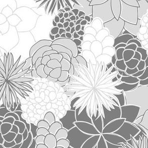Desert Garden (Gray)
