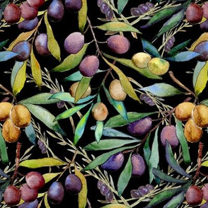 SMALL SCALE PROVENCE OLIVES WATERCOLOR  BLACK FLWRHT