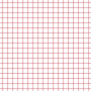 "bold coral windowpane grid 1"" square check graph paper"