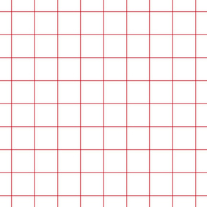 "bold coral windowpane 2"" square check graph paper"