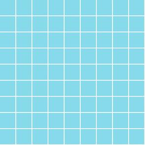 "sky blue windowpane grid 2"" reversed square check graph paper"