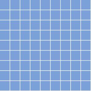 "cornflower blue windowpane grid 2"" reversed square check graph paper"