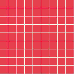 "bold coral windowpane grid 2"" reversed square check graph paper"