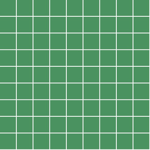 "kelly green windowpane grid 2"" reversed square check graph paper"