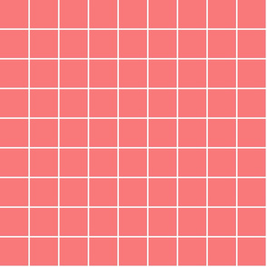 "coral windowpane grid 2"" reversed square check graph paper"