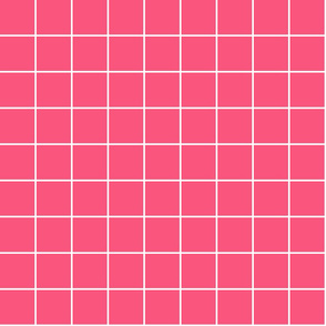 "hot pink windowpane grid 2"" reversed square check graph paper"