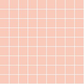 """blush windowpane grid 2"""" reversed square check graph paper #F9CABA"""