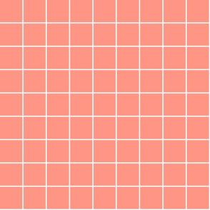 """peach windowpane grid 2"""" reversed square check graph paper"""