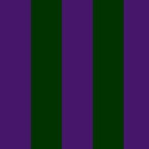FDL stripe coordinate - purple green