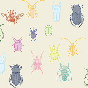 beetles in color on natural