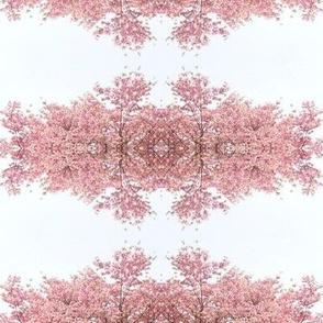 Dogwood Damask in pink