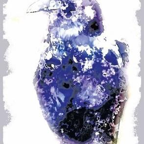 Raven, L