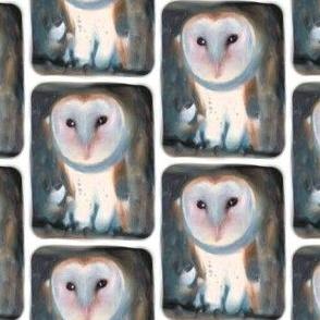 Barn Owl, S