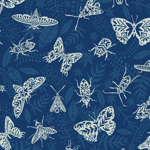 Cyanotype insects