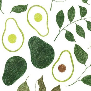 avocado color-pencil