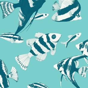 Reef fish (sea green)