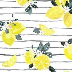 Citrus + Flowers lemon stripe