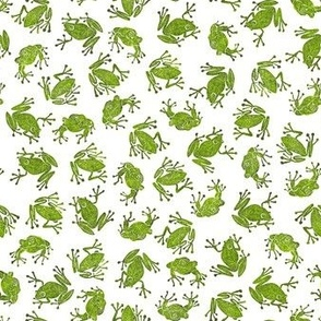 small hiking green frogs on white