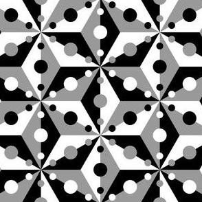 07374853 : SC3C3o : high contrast